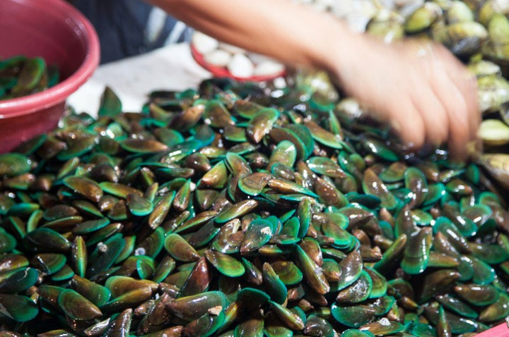 Green mussels in the Philippines © Quentin Gaudillière