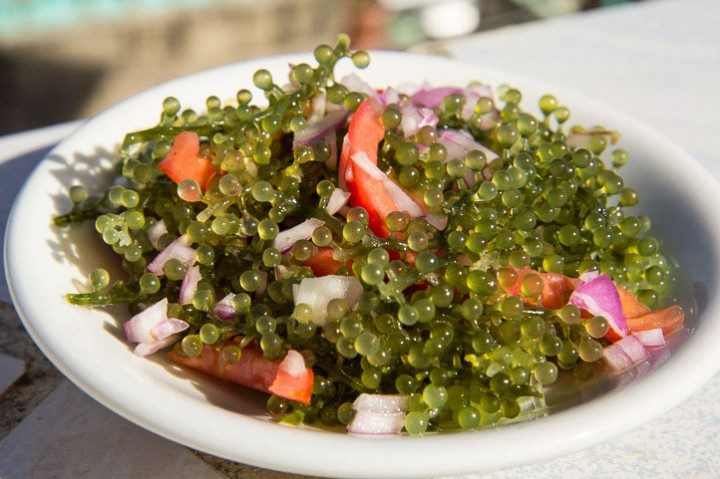 Lato seaweed salad © Camille Oger