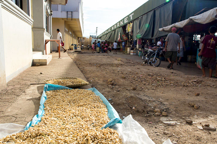 Cashew nuts drying in the sun, Coron market, Philippines © Camille Oger