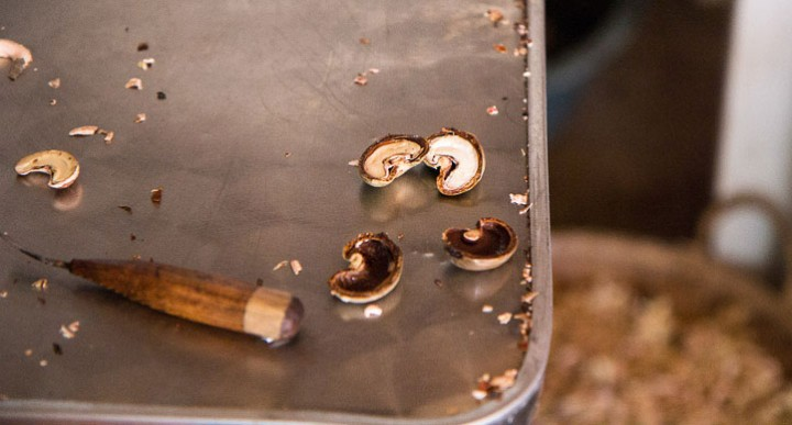 Profession : cashew opener © Camille Oger