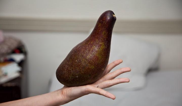 Avocat philippin © Camille Oger