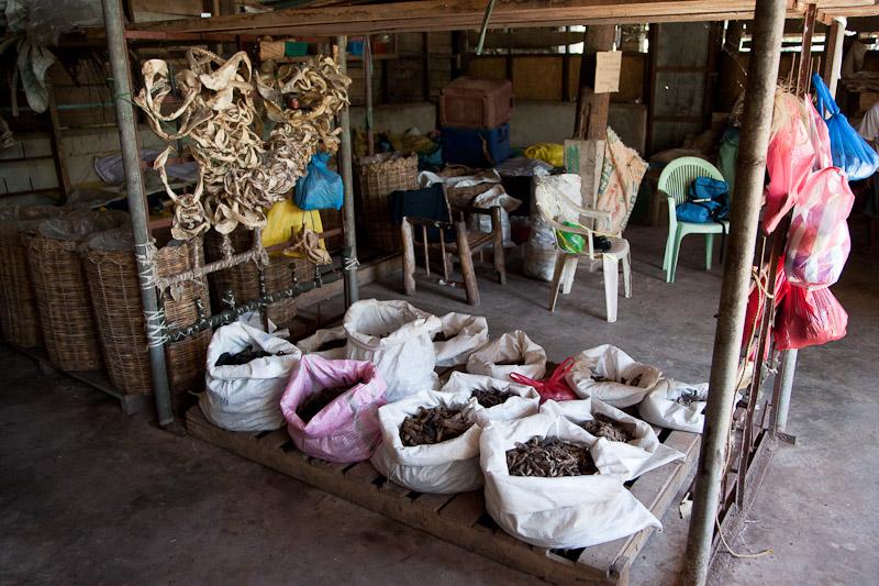 Sacs de concombres de mer pour l'export © Quentin Gaudillière