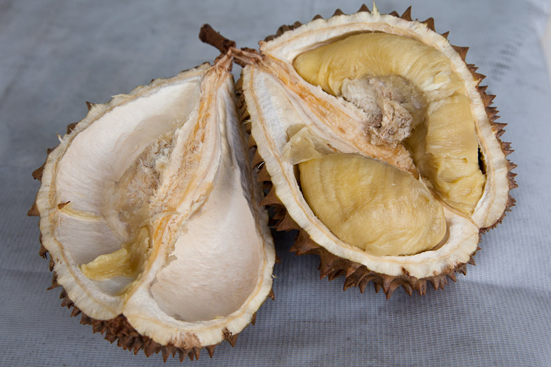 The strange pulp of an old durian © Quentin Gaudillière