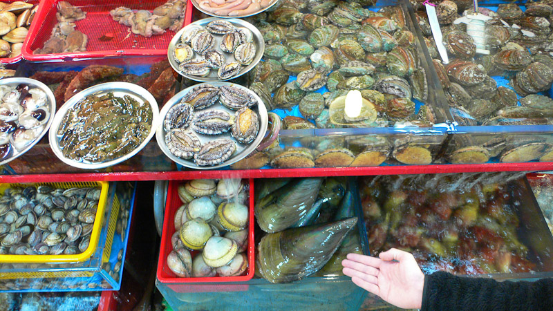 Moules aux orles verts, Busan © Camille Oger