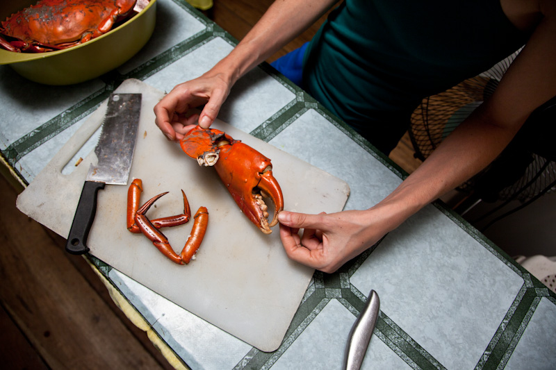 Getting the big guns to crack open the crab claws © Quentin Gaudillière