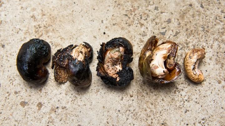 Noix de cajou grillées © Camille Oger