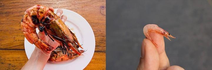 Crevette géante tigrée et sakura ebi © Camille Oger