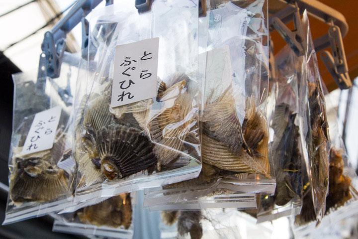 Nageoires de fugu © Camille Oger