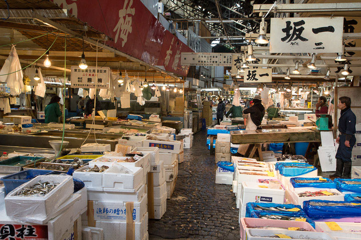 Une allée de fruits de mer à Tsukiji © Camille Oger