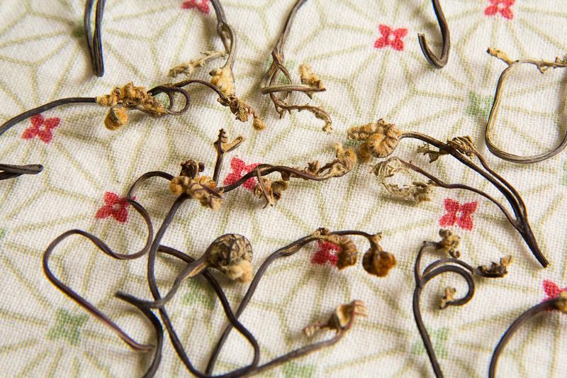 Pousses de fougère-aigle séchées, Corée © Camille Oger