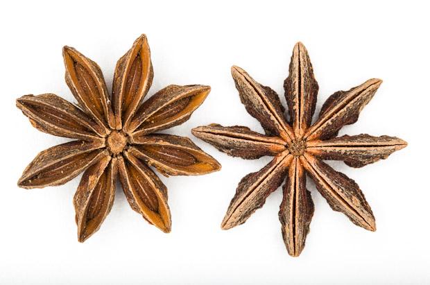 Les huit carpelles de l'anis étoilé © Quentin Gaudillière