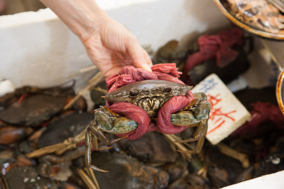 Crabe chinois, Hong Kong © Quentin Gaudillière