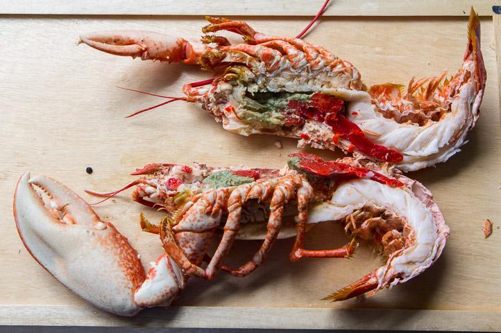 Découe de homard femelle avec oeufs © Camille Oger