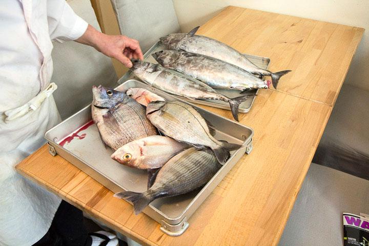 Livraison de poisson ultra-frais chez Yuzu © Camille Oger