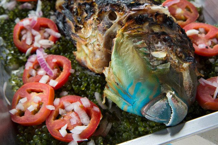 Poisson perroquet grillé au lato, Palawan © Camille Oger
