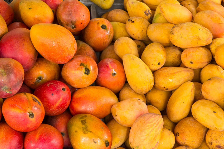 Mangues de Taïwan © Camille Oger