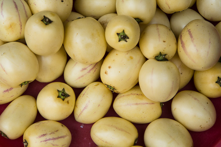 Pepinos ou poires-melons © Camille Oger