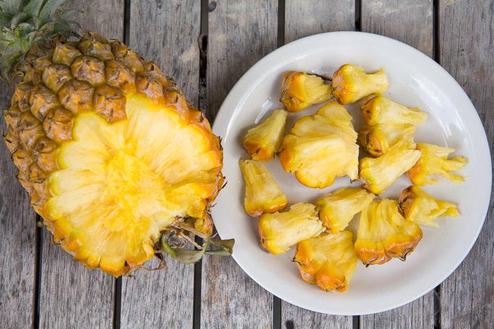 Snack Pine © Camille Oger
