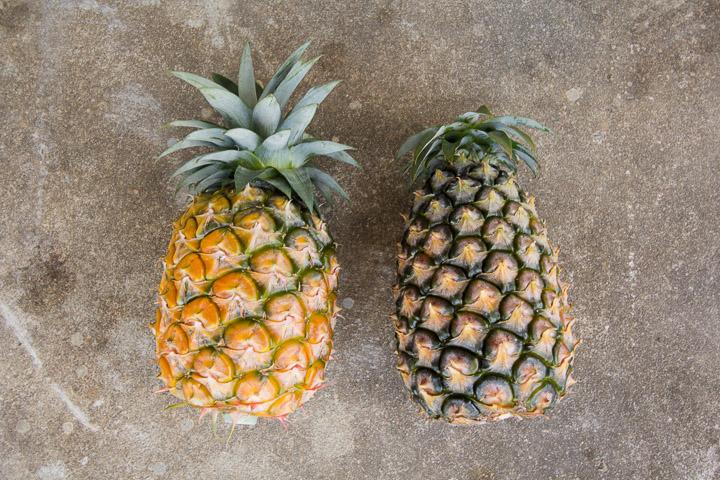 Ananas jaune à gauche, blanc à droite © Camille Oger