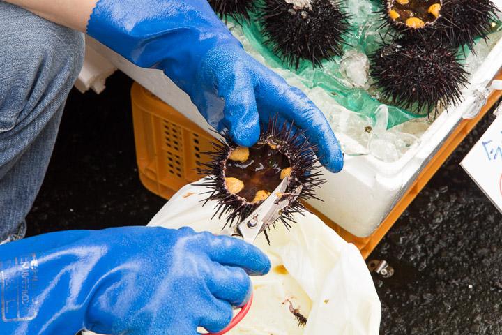 Préparation des oursins à manger tels quels, marché d'Hakodate © Camille Oger