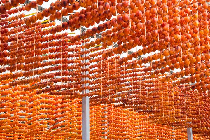 Rideaux de kakis à sécher © Camille Oger