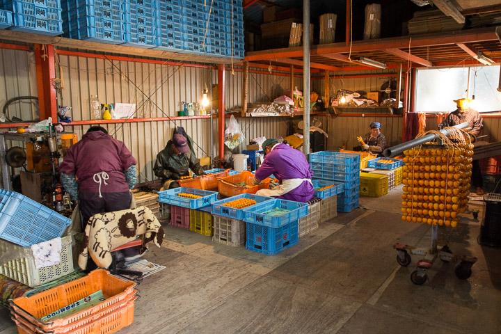 Producteurs de kakis séchés au travail ©Camille Oger