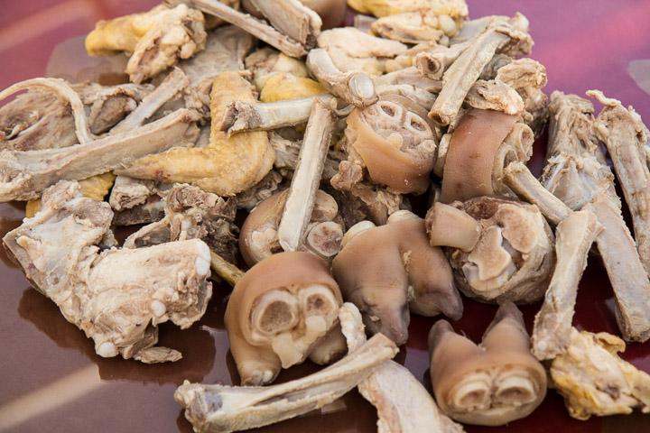 Les os blanchis © Camille Oger