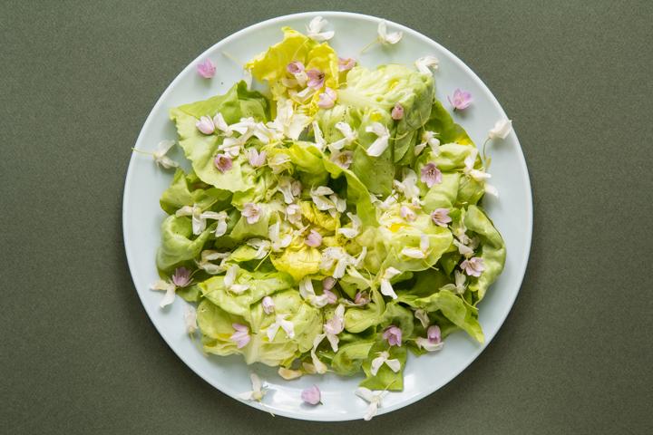 Salade aux fleurs de glycine © Camille Oger